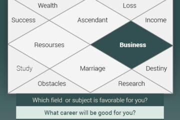 Horoscope Reading for Business